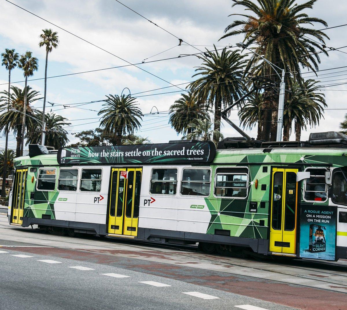 New Shoots Tram